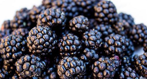 Salute alimentare: 9 buoni motivi per mangiare i gelsi, proprietà e benefici